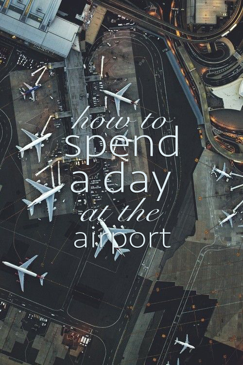 how to survive a day at the airport